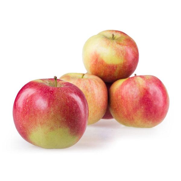 Јаболка Ајдарет кгр